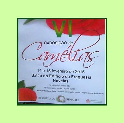 Cartaz exposição Novelas - Fev 2015.jpg