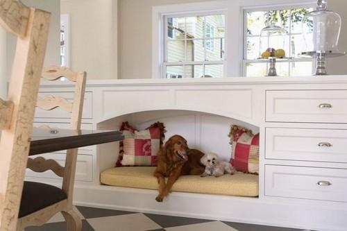 cama móvel cão.jpg