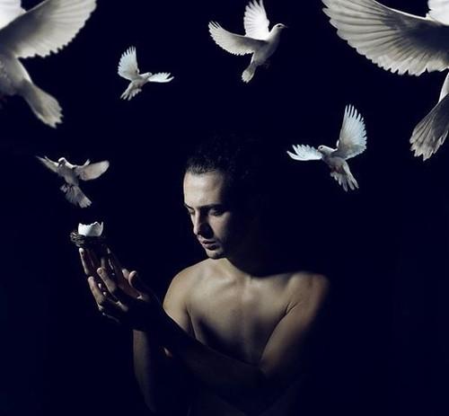 silêncio ardente dos pássaros