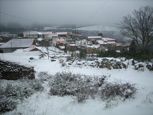 neve 2010