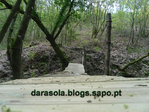 Rota_do_Gaia_26.JPG