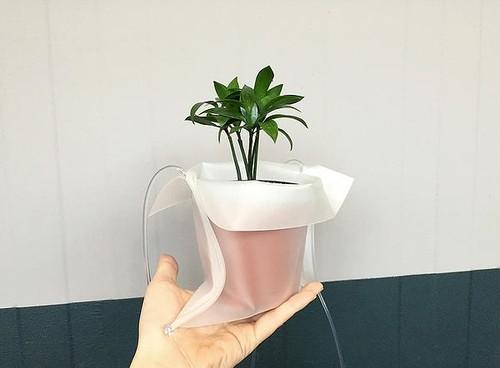plantas-pot-cradle-5.jpg