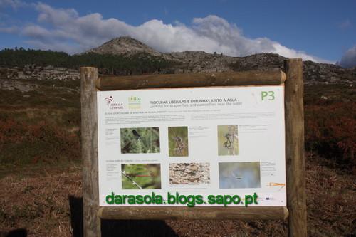 Biodiversidade_Freita_11.JPG