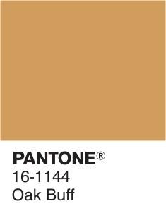 16-1144-oak-buff-pantone-fashion-color-report-outo