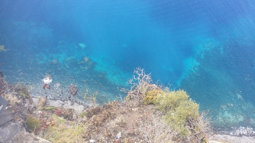 Madeira (370).jpg