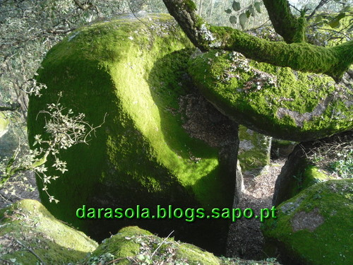 Trilho_Eiras_Famalicao_37.JPG