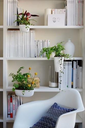 plantas-em-casa-1.jpg