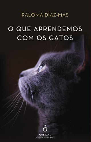 frenteK_que_podemos_aprender_Gatos.jpg