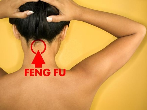 feng-fu1.jpg