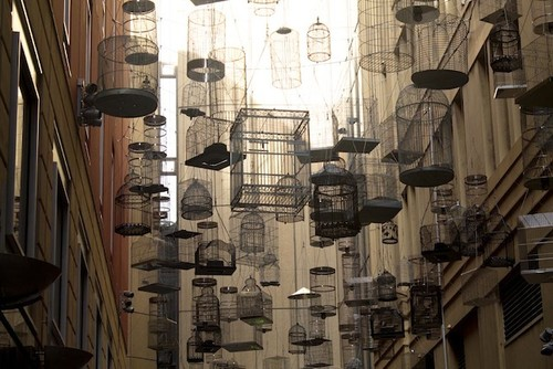 australia-sydney-angel-place-birdcages.jpg