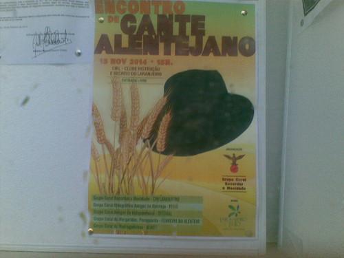 Cante Laranjeiro. Foto de F.M.C.L.