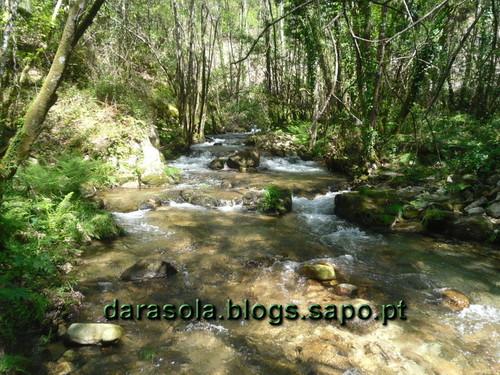 Rota_do_Gaia_18.JPG