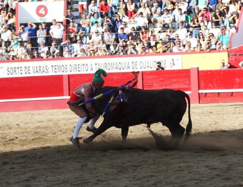 3Toiro Carlos Cabeça.jpg