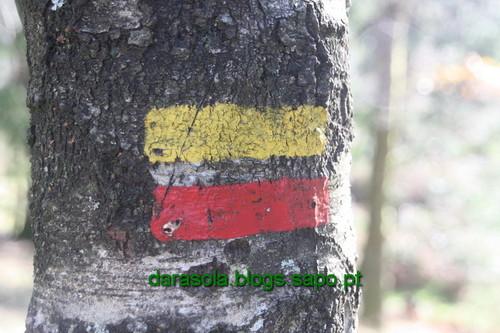 Biodiversidade_Freita_05.JPG