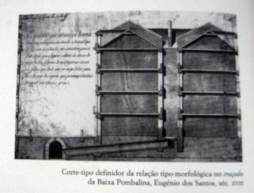 MorfologiaTipologia.JPG