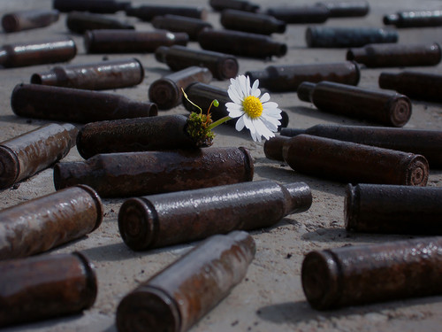 flor bala.jpg
