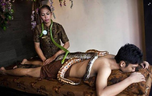 snake-massage-124033147057.jpeg