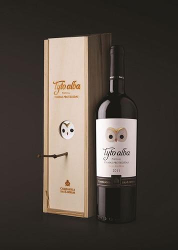 Tyto-Alba-(2).jpg