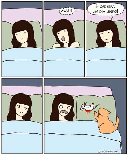 gato rato.jpg
