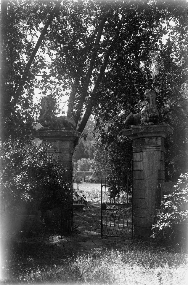 Quinta da Alfarrobeira.jpg