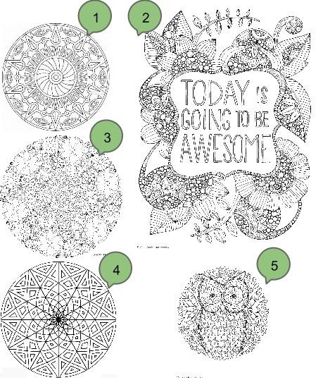 Desenhos para adultos colorirem.jpg