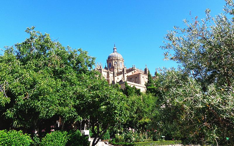 vista da Catedral a partir do Huerto de Calixto y Melibea