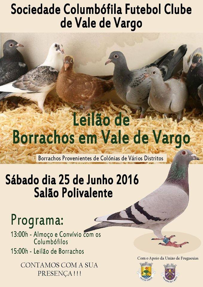 Leilão Vale Vargo.jpg