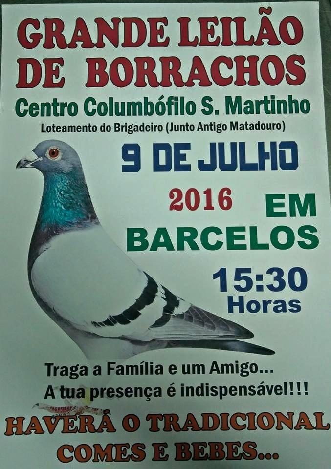 Leilão S Martinho.jpg
