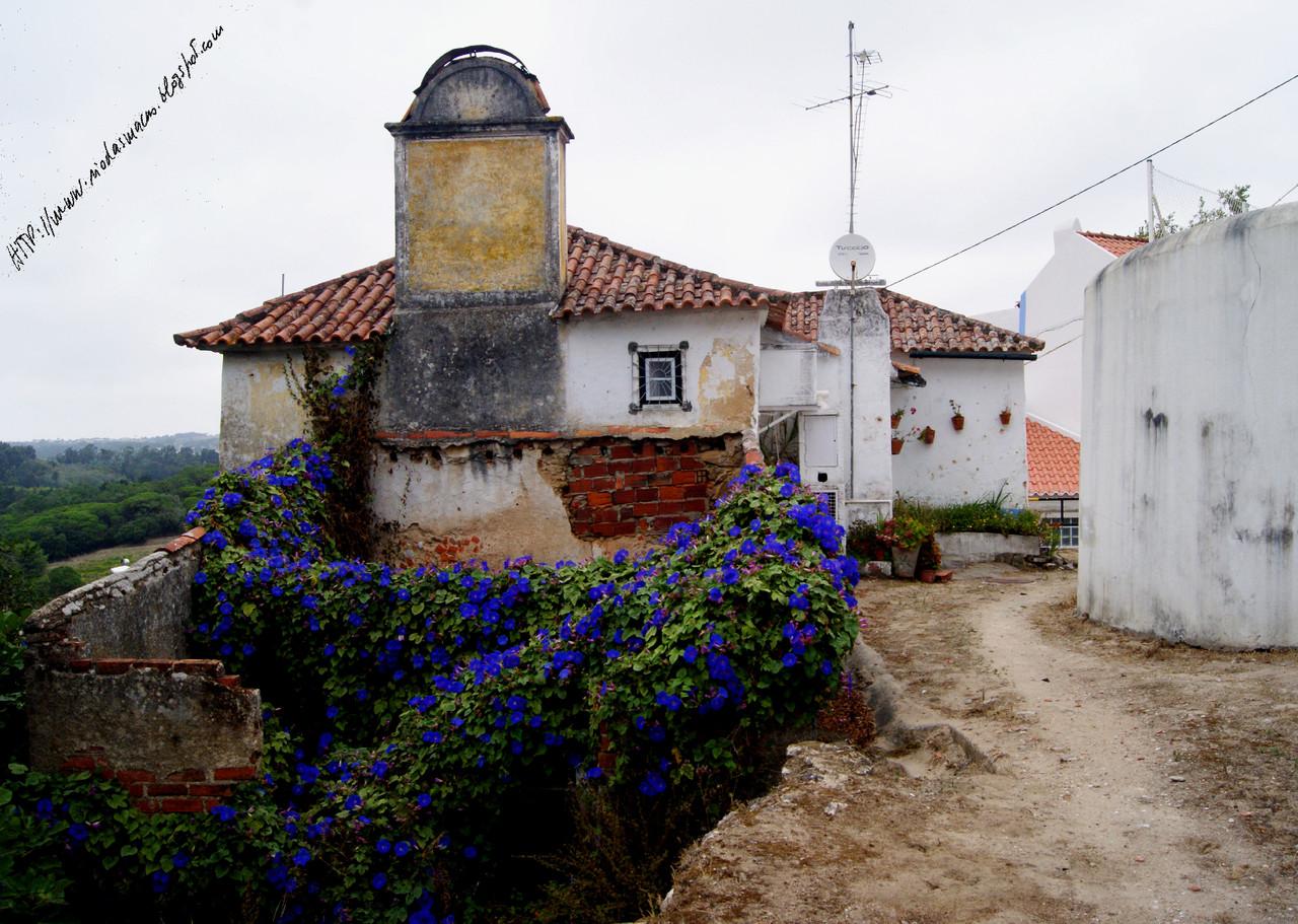 EugariaRua01092015blog.jpg
