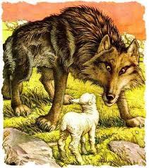 Lobo e Cordeiro.jpg