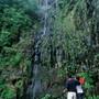 Madeira_Fotos_JorgeSimao_madeira16.jpg