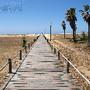 Passadeira de Praia da Figueira da Foz