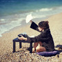 escrever junto ao mar