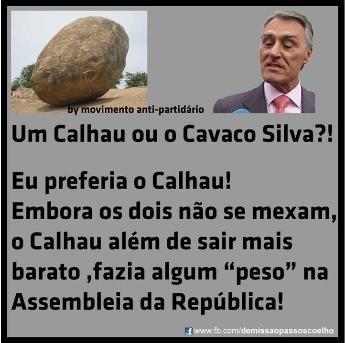 C.Silva-calhau.jpg