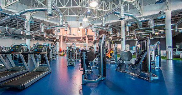 Fitness-Hut-newsletter.jpg