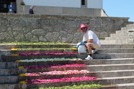 Tapetes Flores Corpo Deus Coura 2013 M