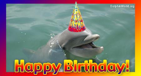 dolphin-birthday.jpg