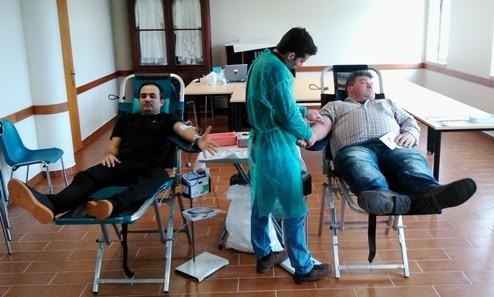 recolha sangue (11)