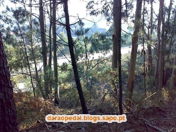 Serra_Canelas_Gaia_13