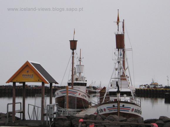 foto 1 - barcos wale watching.jpg