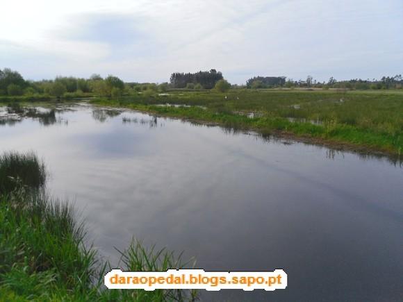 GeoBTT_BioRia_04