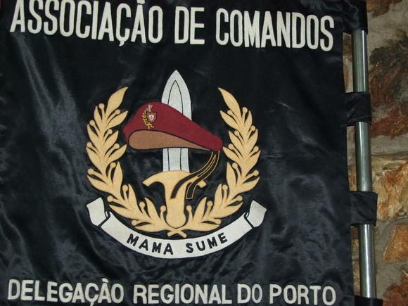 95 - Matos da Ranha 27-02-2010.JPG