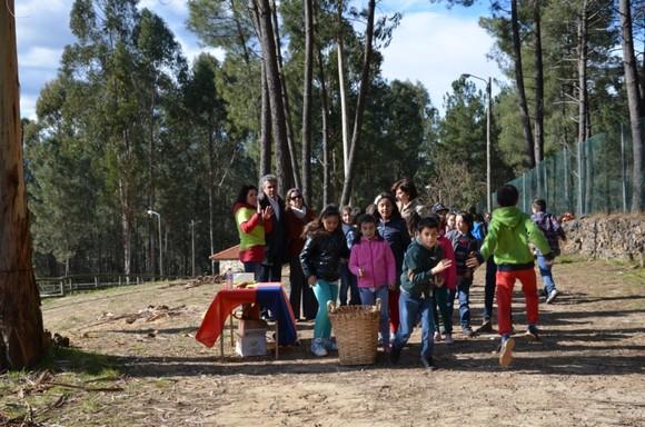 Dia Mundial da Árvore em Cabeceiras de Basto (1)