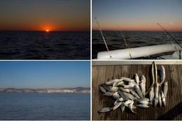 Pesca_02.jpg