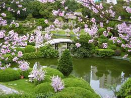 JardineriaChina1.jpg