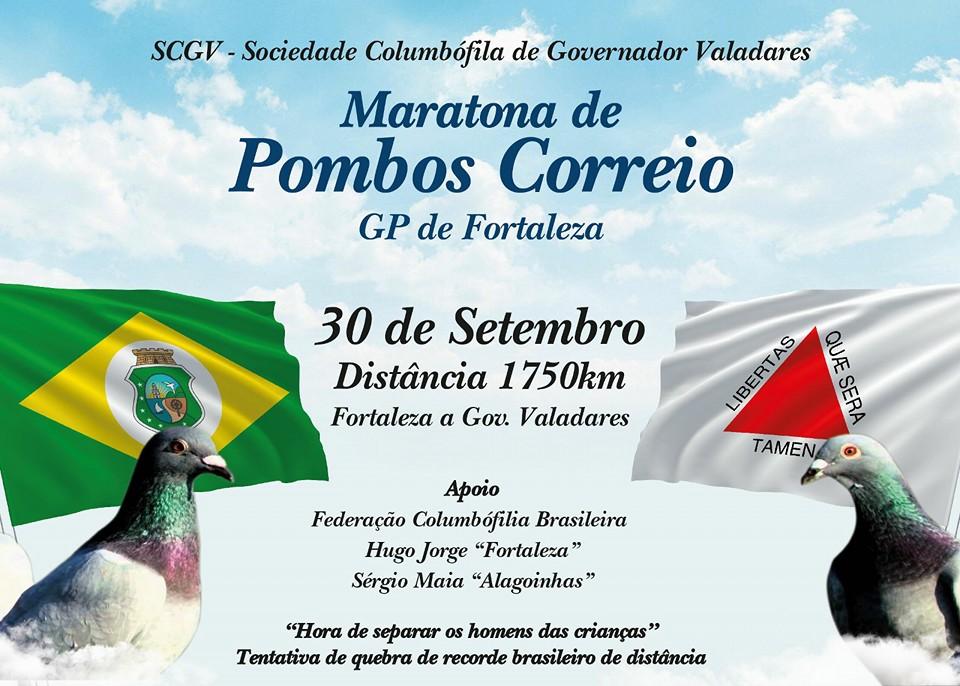 Maratona Brasil.jpg