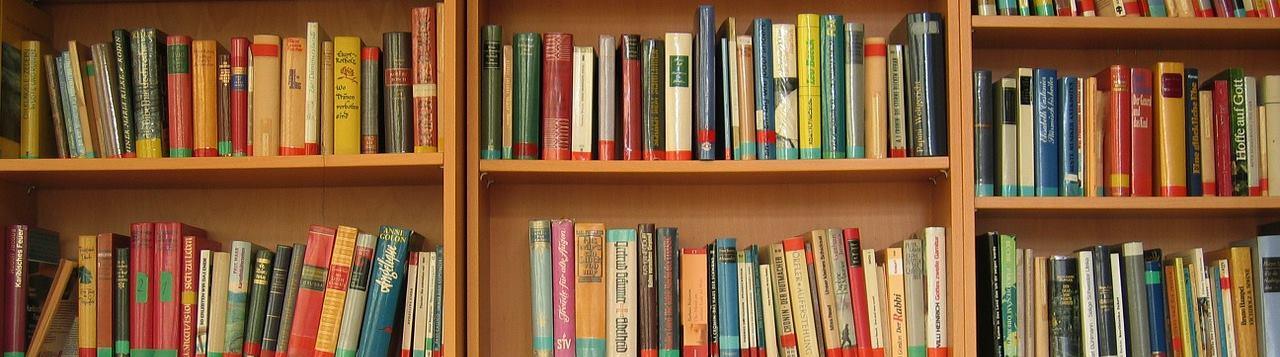 Pixabay free images: Bookshelf | Estante de livros