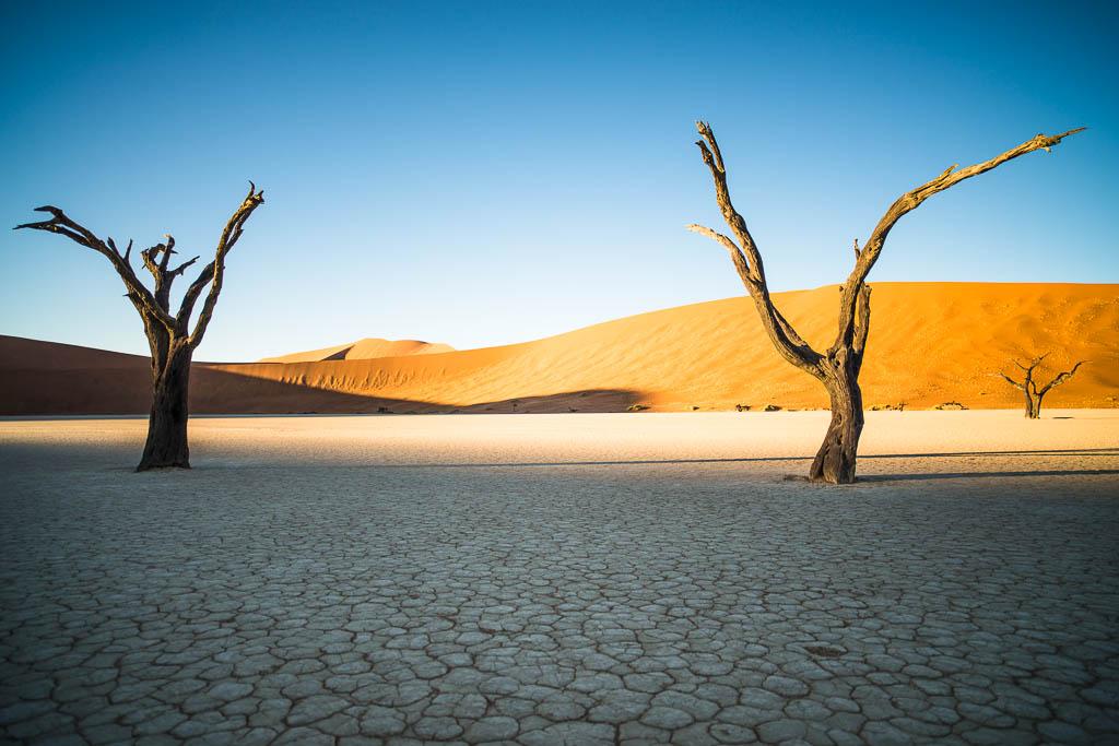 Deadvlei-Sossusvlei-Namibia-20121203-065317-Ian-Pu