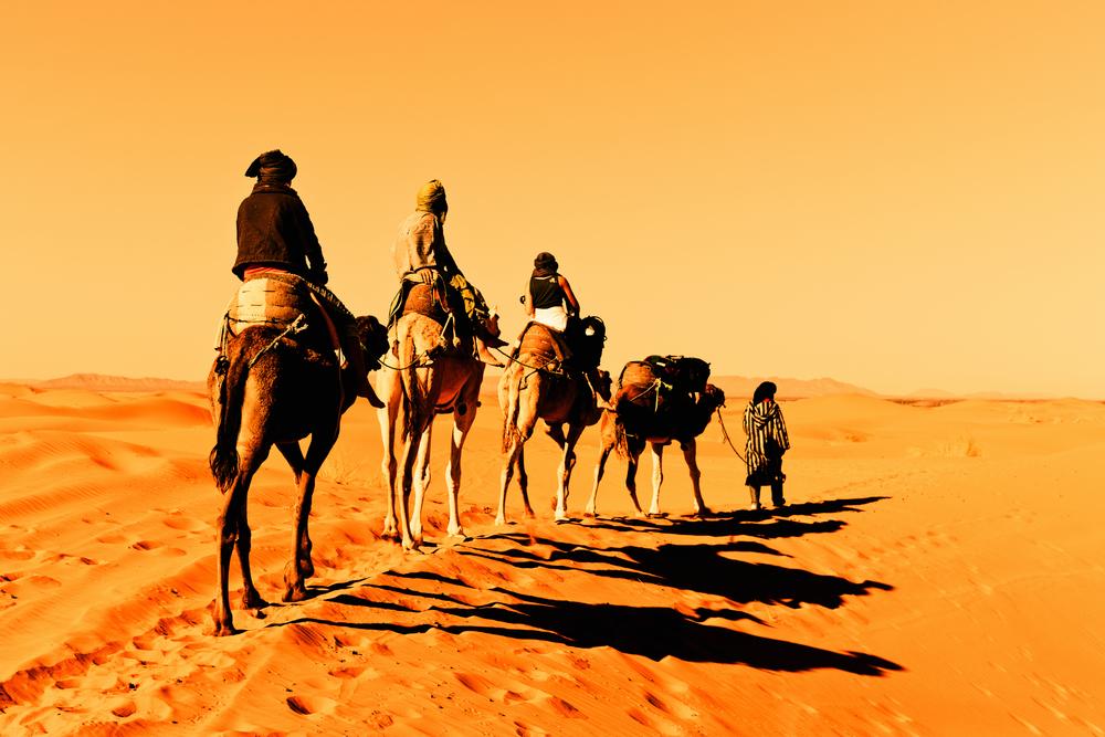 Camel-caravan-going-through-the-sand-dunes-in-the-